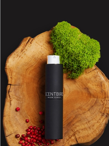 Scentbird Monthly Cologne Subscription Box: Designer Scents $14 95