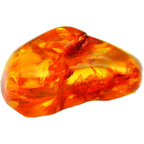 Exotic Amber