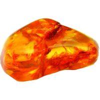 Exotic Amber