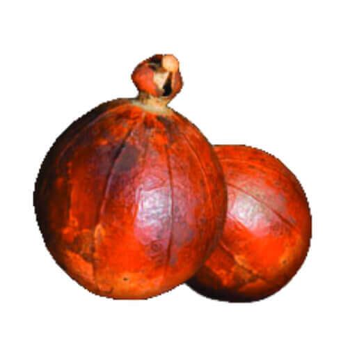 Maninka Fruit