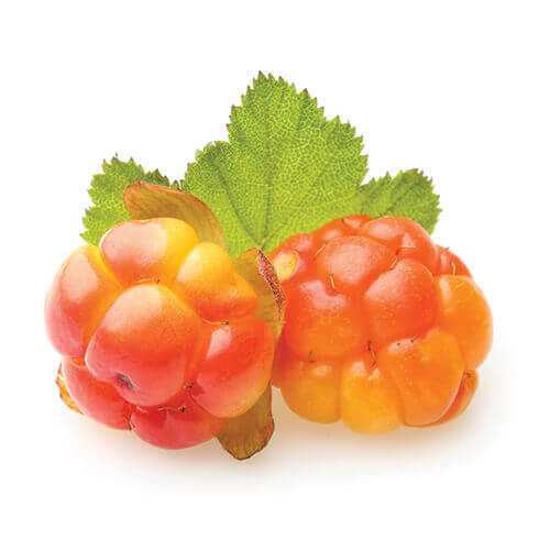 Crystallized Cloudberries